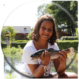 /individueel-vissen-forelvissen-vissen-op-zalmforel